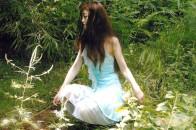 《スカボロフェア;ローズマリー その3》  song image fantasy  東京都・代々木公園  撮影;Michiko Sakurai氏